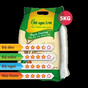 Gạo Hạt Ngọc Trời Bạch Dương 5kg